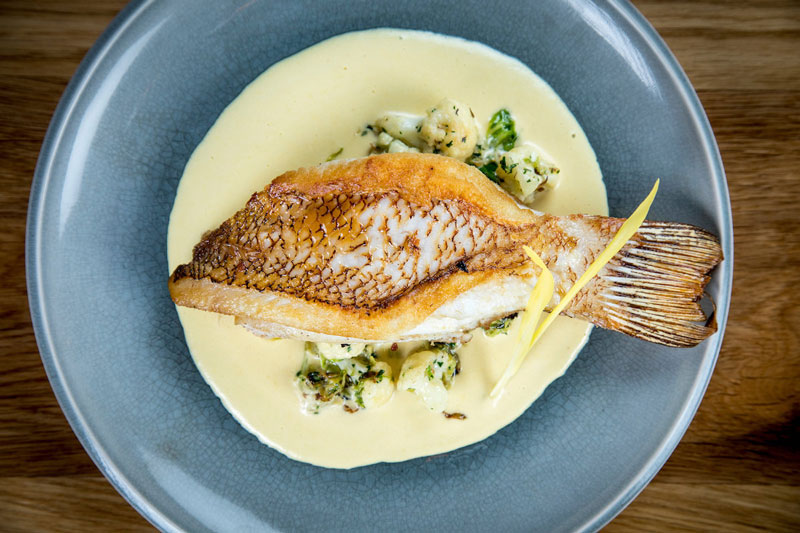 The Pan Roasted Hogfish, with shaved Brussels and cauliflower sweet corn beurre blanc. Photo by Benjamin Rusnak.