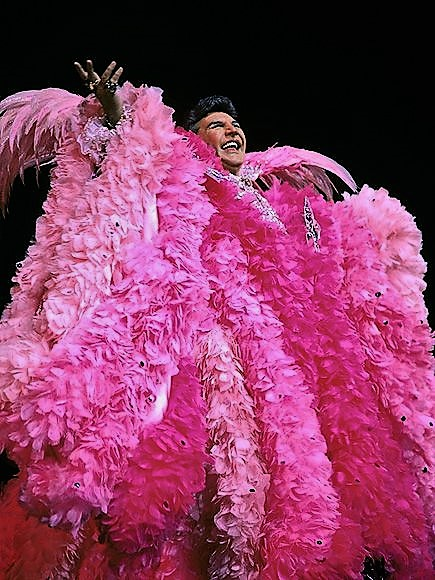In the Pink Feather Cape 2 (1) (1)
