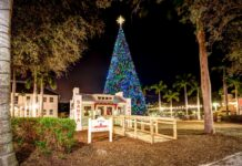 delray christmas tree